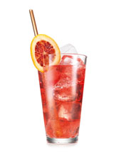 Cranberry-Vodka-Fizz